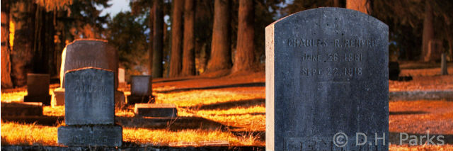 Estate planning with use of the advance health care directives allows you to detail end-of-life wishes