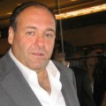 Recently, James Gandolfini has been in the news for what pundits claim is a top celebrity estate planning disasters